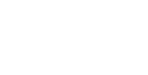 Be Native Tours logo white